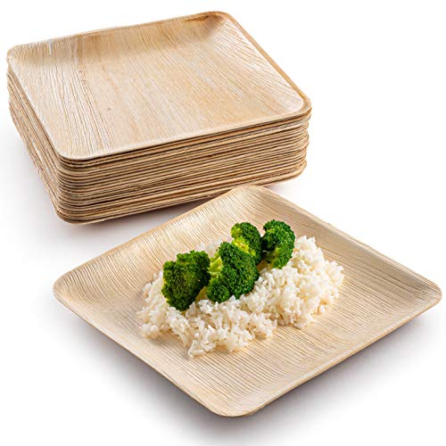 Heavy Duty Eco-Friendly & 100% Natural Palm Leaf Disposable Serving Plates