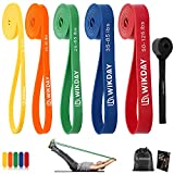 WIKDAY Resistance Bands, Pull Up Bands, Workout Bands for Exercise, Thick Heavy Resistance Band Set with Door Anchor, Elastic Bands for Body Stretching, Crossfit Training at Home/Gym for Men & Women