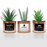 Mini Plantes Artificielles (Lot de 3) - Petites Fausses Plantes Succulentes Cactus en Plastique avec Pot en Métal Doré pour Décoration Intérieur, Cuisine, Bureau, Balcon, Salle de Bains, Étagère