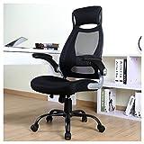 BERLMAN High Back Mesh Office Chair with Adjustable Armrest Lumbar Support Headrest Swivel Task Desk Chair Ergonomic Computer Chair (Black)