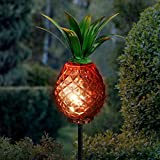 Exhart Red Pineapple...image