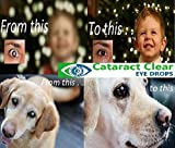 2 x 15ml Bottles of The Best Cataract Treating Eye Drops Anywhere, 2% N-Acetyl-Carnosine. Twice as Strong as Most Similar Products. Holistic & Proven Effective. for People & Pets!