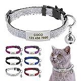 Beirui Collier pour chat avec étiquettes d'identification à glissière en acier inoxydable – Médaille...