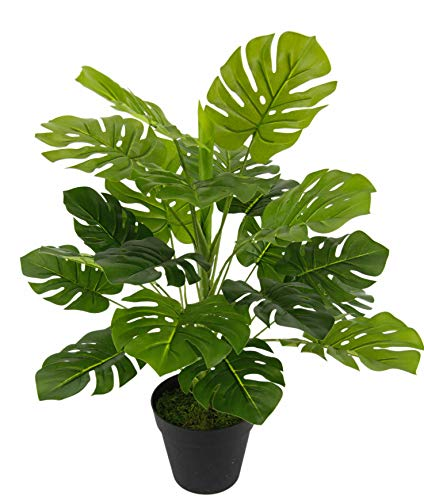 Flair Flower Zimmerpflanze Splitphilo Topf Monstera Kunst Seidenblumen Real Touch grün Kunstpflanzen künstliche Pflanzen Splitphilopflanze Dekopflanze groß 53 cm, 26x53x26 cm