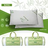 iMounTEK Bamboo Rayon Breathable Hypoallergenic Memory Foam Pillow with Washable Pillow Case (King Size)(2-Pack)