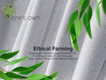 One's Own Mattress Protector, Renewable Organic Tencel/Eucalyptus Fiber Top, Biodegradable TPU Waterproofing, Hypoallergenic, Five-Sided, White, Queen