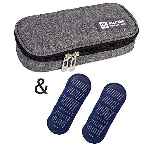 Apollowalker Borsa termica per mantenere l'insulina e medicinali (grigio + 2 impacchi di ghiaccio)