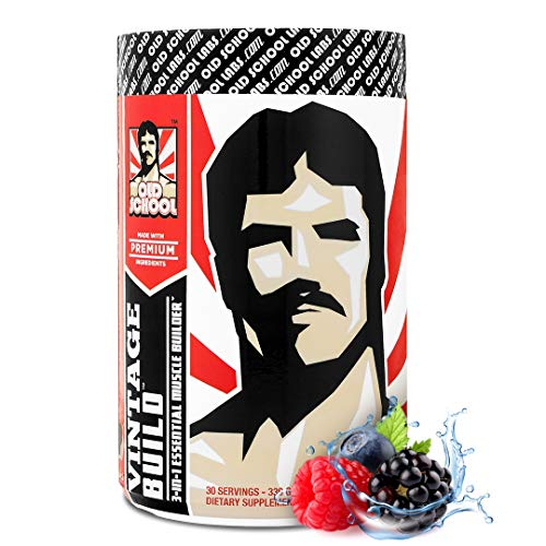 VINTAGE BUILD Post Workout BCAA, Creatine, L-Glutamine - The Essential 3-in-1 Muscle Building Recovery Powder for Men and Women (Fresh Berries) - Keto Friendly - 377 Grams - 30 Servings 1