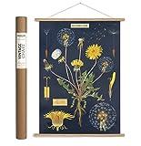 Cavallini Papers & Co. Cavallini Vintage Dandelion Hanging Poster Kit, Multi
