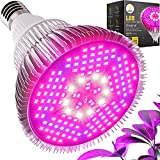 Haus Bright LED Grow Light Bulb - for Indoor Plants Full Spectrum Lamp | Seed Starting, House, Garden, Vegetable, Succulent, Hydroponic, Greenhouse Growing | 100W E27 (Original)