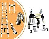 Leogreen - Échelle Multifonction, Échelle Telescopique, 3,8 mètre(s),...