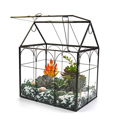Large Tall Plant Terrarium Glass – Glass Greenhouse Terrarium with...