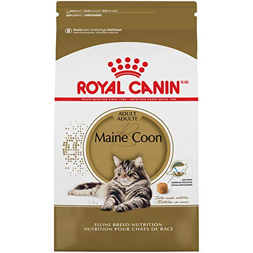 Royal-Canin-Maine-Coon-Breed-Adult-Dry-Cat-Food-14-lb