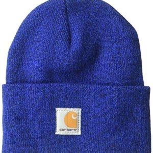 Carhartt Kids' Acrylic Watch Hat, Royal (Youth), One Size