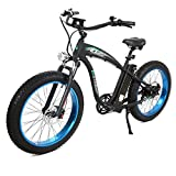 ECOTRIC Powerful Fat Tire...