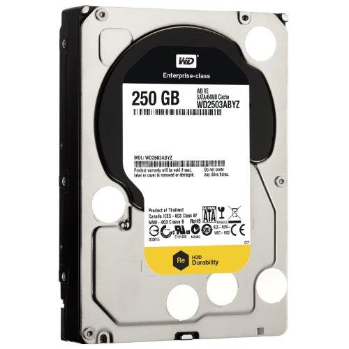 Western Digital Raid Edition interne Festplatte 250GB (8,9 cm (3,5 Zoll), 64MB Cache, 7200rpm, SATA III)