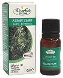 Naturesun aroms - Diffusion Anti-Tabac - Assainissant Bio - 10 ml