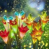 DUUDO Solar Garden...image