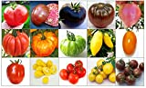150 GRAINES deTOMATESRARE et RICHE en NUTRIMENTS COLLECTION de 15 VARIETES: TOMATE GéANT ITALIENNE, CHEROKEE PURPLE, NOIRE DE CRIMEE, BRANDYWINE NOIR, COEUR ROSE, COSTOLUTO FIORENTINO, PINEAPPLE, GREEN ZEBRA, BANANA LEGS, ORANGE STRAWBERRY, ROMA, YELLOW PEAR, CERISE ROUGE, CERISE GOLD et CERISE NOIRE