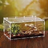Rainmood Vivarium Acrylique Boîte De Reproduction D'insectes Panoramique Transparente pour Scorpion Lézard...