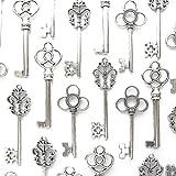 Aokbean Mixed Set of 30 Large Skeleton Keys in Antique Silver - Set of 30 Keys