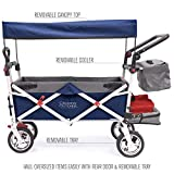 Creative Outdoor Push Pull Collapsible Folding Wagon Stroller Cart for Kids | Silver Series | Beach Park Garden & Tailgate | Navy Blue