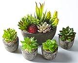 Jobary 5pcs Plantas Suculentas Artificiales Falso Plantas Decorativas SuculentasIdeal para el Hogar, Oficina y Decoracin al aire libre Falso Plantas