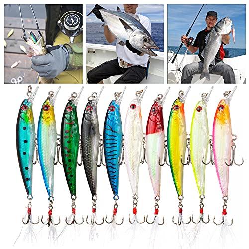 Weinsamkeit Esca da Pesca Spinning, 10 Pezzi 3D Esche Artificiali Esca Finta Pesca Mare, Fishing Lure per Trota Spigola Luccio, Pesca Accessori Kit per Acqua Dolce e Salata