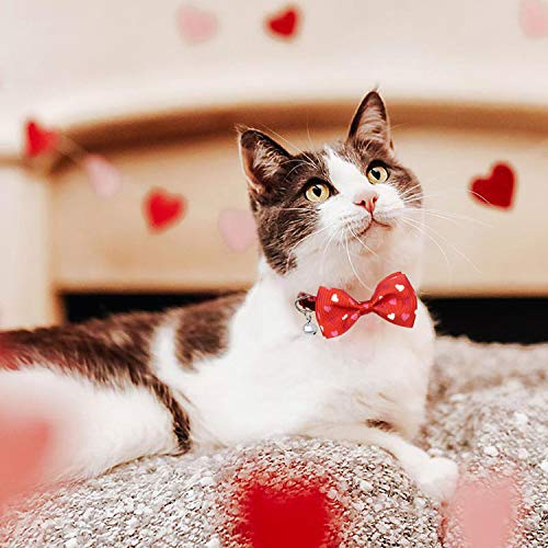 Pohshido Valentine's Cat Collar with Bow Tie and Bell, Holiday Breakaway Loving Heart Kitty Kitten Collar for Girls and Boys Male Female Cats (Love Song)