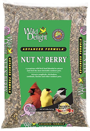 Wild Delight 366200 20-Pound Nut N-Berry Birdfood, 20 lb