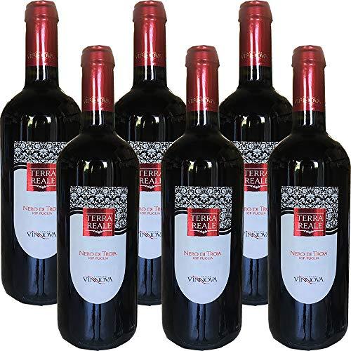 Nero di Troia Puglia IGP | Vino Rosso | Cantine Vin Nova | 6 Bottiglie 75Cl | Idea Regalo