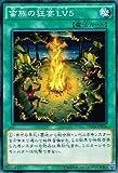 遊戯王OCG 蛮族の狂宴LV5 ノーマル DUEA-JP056