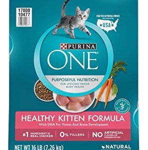 Purina ONE Healthy Kitten Formula Kitten Food