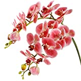Famibay 2 Branches Orchidees Artificielles Tiges Orchidee Papillon Fleur Rose...