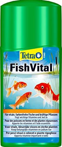 Tetra Pond AquaFit (Cura Vitale per Le Condizioni Naturali dell'Acqua per Pesci, Piante e microrganismi nei laghetti da Giardino), flacone da 250 ml