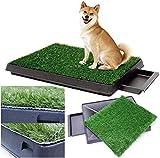 Sailnovo Toilettes pour chien - Avec gazon synthétique - 63 x 50...