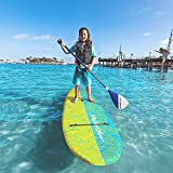 Wavestorm 8ft Expect More Stand Up Paddleboard