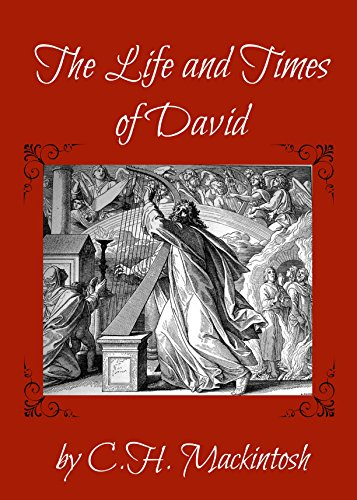The Life and Times of David (English Edition)
