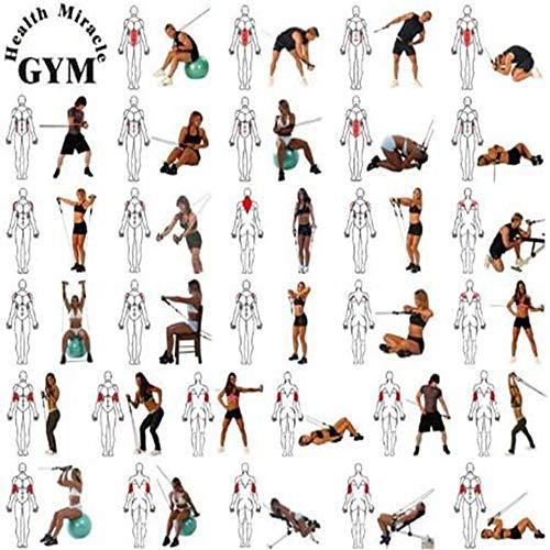 51gtgn1i7IL - Home Fitness Guru