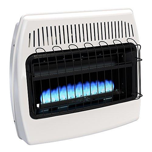 Dyna-Glo BF30NMDG 30,000 BTU Natural Gas Blue Flame Vent...