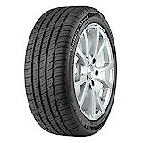 Michelin Primacy MXM4 All-Season Tire 235/40R19/XL 96V