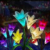 Outdoor Flower Solar...image