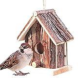 bird house Nido per uccelli Casetta per uccelli da giardino Casette per uccelli Rspb Casetta per uccelli Robin Casetta per uccelli Piastre di protezione Casette per uccelli Piastre per nidi Piastre