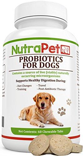 NutraPet Probiotics for Dogs Chewable, Digestive...