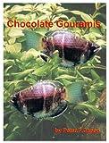 Chocolate Gourami