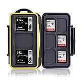 Ares Foto® Scatola di Protezione per schede di Memoria per 3 CF Carte (Compact Flash Cards) e 6 SD Cards. Porta Schede Memoria. Cassa Stoccaggio e Trasporto. Sacchetto Bustina, Scatola di stoccaggio