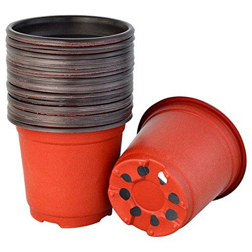 Yookat 100 Pcs 4 Inch Plastic Plants Nur Buy Online In United Arab Emirates At Desertcart