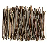 TKOnline 100Pcs 10cm 0.1-0.2 Inch in Diameter Wood Log Sticks for DIY Crafts Photo Props Craft Sticks,Wood Crafts,Sticks inch,Wood Sticks,Wood Craft Sticks,Photo Stick,Photo Props,Wood logs