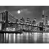 Papier peint intissé New York 352 x 250 cm - Tapisserie Decoration Murale XXL...