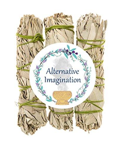 Alternative Imagination California White Sage Bundles for...